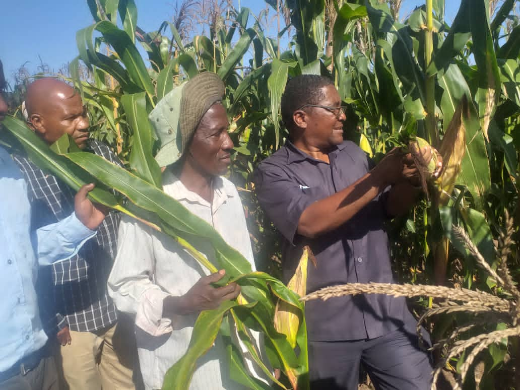 Director General Dr.Geofrey Mkamilo Visited the center and one of the Maize demonstration plots managed by the farmer.