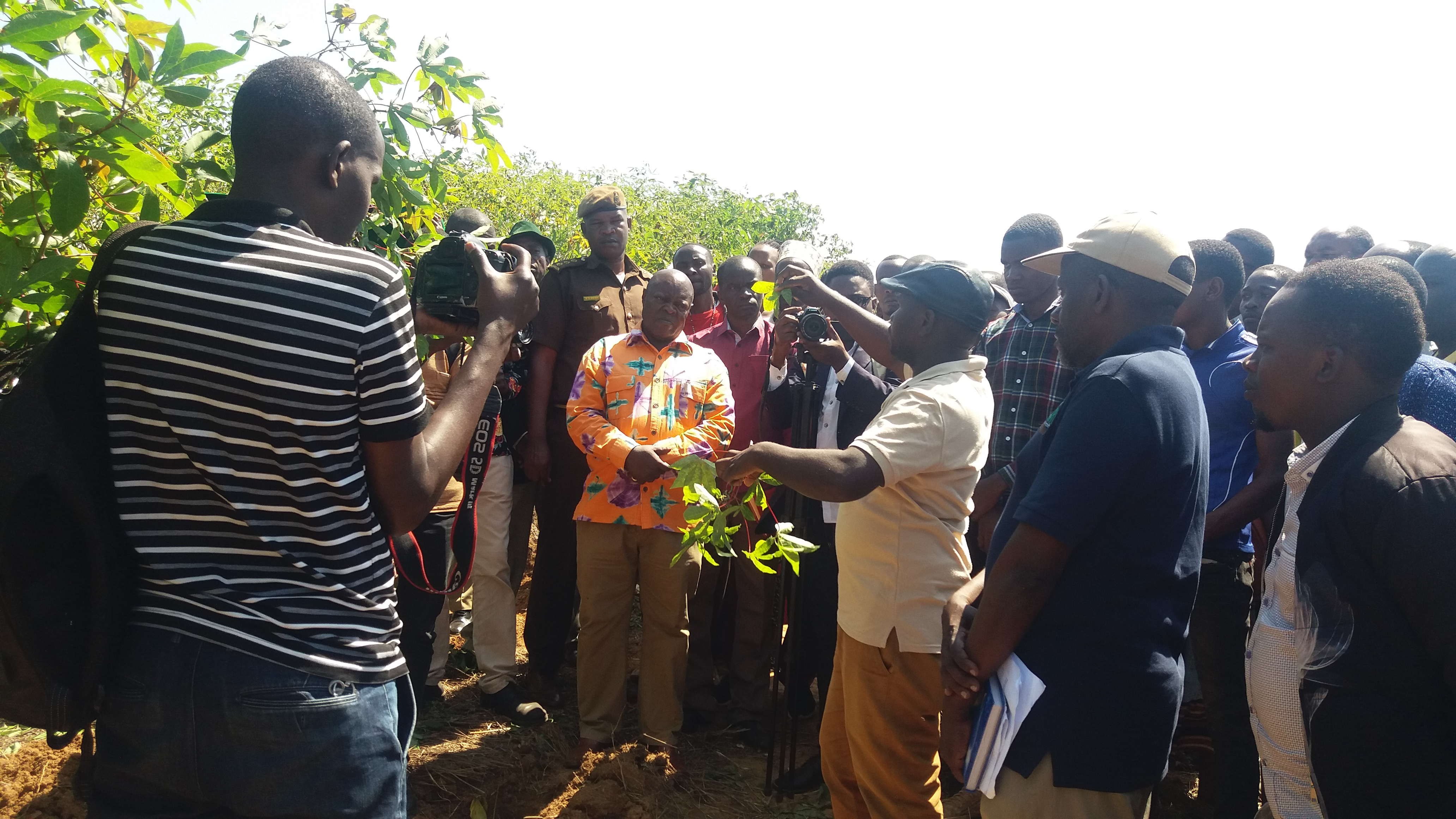 TARI Maruku promotes improved cassava varieties through farmers' field days. Muleba District Commissioner, Hon. Richard H. Ruyango (at the center in the picture) listening to farmers and researchers during field day conducted in the Muleba district.
