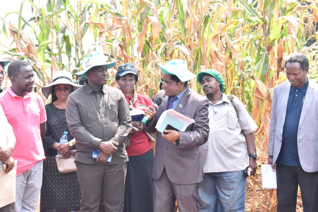 Mwalimu Julius Kambarage Nyerere Agricultural Exhibition Ground Launched Second Agricultural Technology Transfer Hub
