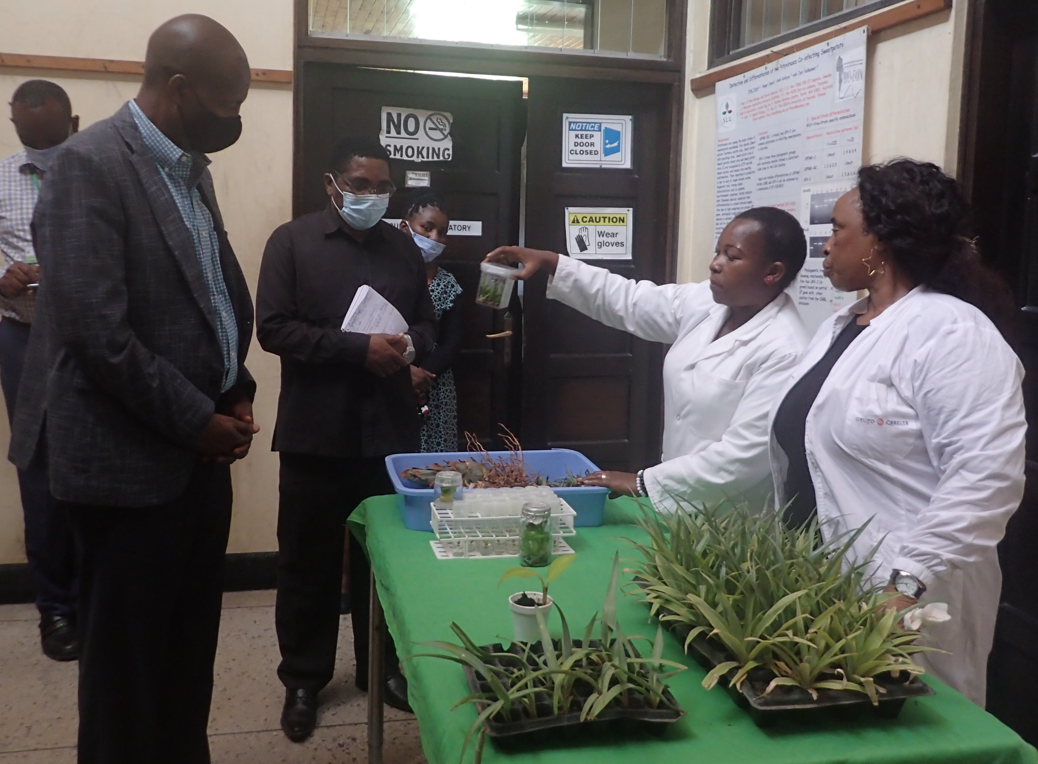 The Permanent Secretary of Ministry of Agriculture Hon. Andrew Massawe receiving explanations on the application of biotechnology in boosting production of planting materials for vegetatively grown crop from tissue culturists Ms. Magreth Lupembe and Rose