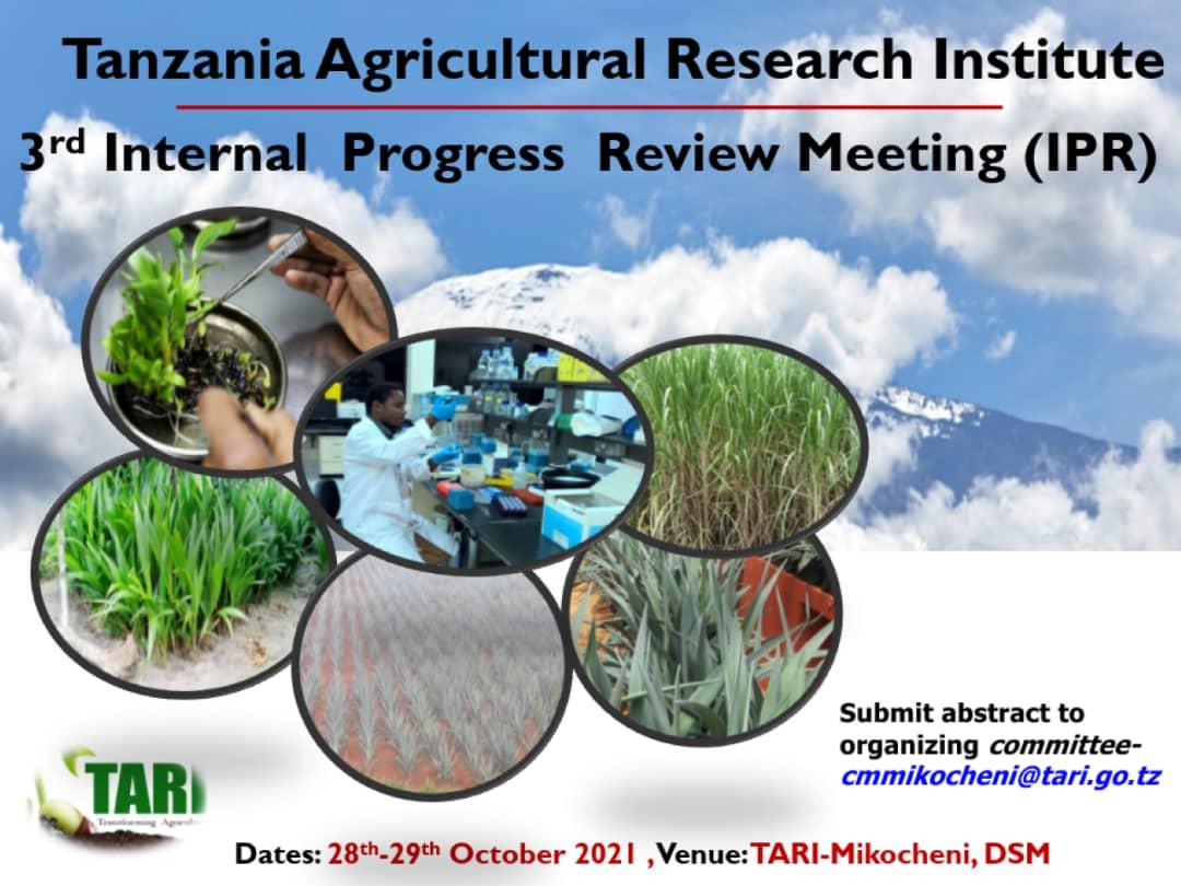 TARI Mikocheni is planning the 3rd Internal Progress Review (IPR) for TARI Mikocheni, TARI Mlingano and TARI Kibaha which will be held on 28th – 30th October 2021, venue: TARI -Mikocheni, DSM.