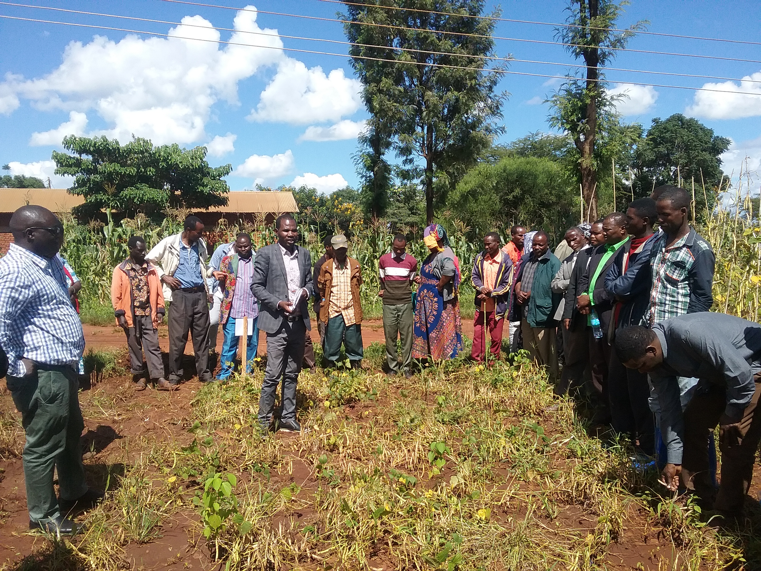 Mr. Nestory Shida, the head of Bean Program at TARI-Selian, giving detailed information on bean varieties developed by TARI-Selian center  during the Farmers Field Day at Hydom,Mbulu District on 01/04/2021