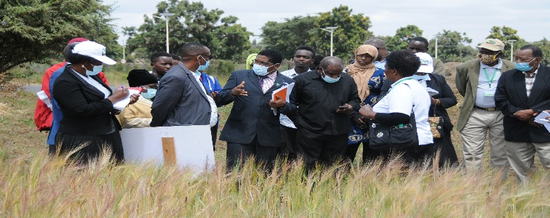 Dr. Geoffrey Mkamilo, Director General-TARI clarifies a point to Dr. Athuman Kihamia, Arusha Regional Administrative Secretary during Agribusiness Expo Exhibition at TARI-Selian