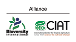 The Alliance of Bioversity International and CIAT